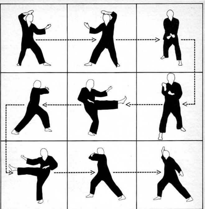 Karate Moves Step By Step For Kids Art-Ultimate Empty Han...